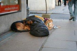 Kerry Pringle Girl in sleeping bag 300 dpi