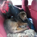 Buddy Washburn1 1 scaled