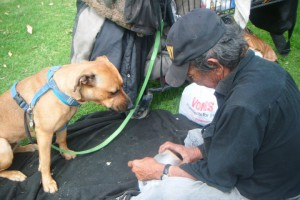 FB man feeding dog